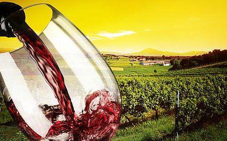 Vinařský kurz v délce 4 hodin spojený s degustací vín