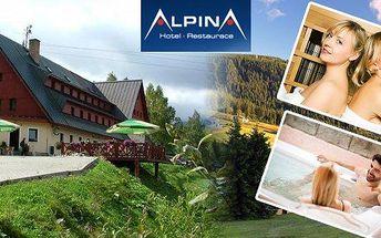 Krkonoše - 3 nebo 6 dní v hotelu Alpina*** Špindlerův Mlýn s polopenzí jen 100 metrů od lanovky Hromovka. Sauna neomezeně a báječné slevy! Užijte si krásnou dovolenou v Krkonoších!