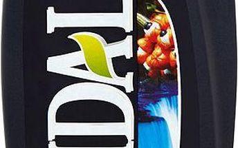 Vidal Energy & sport sprchový gel 250 ml