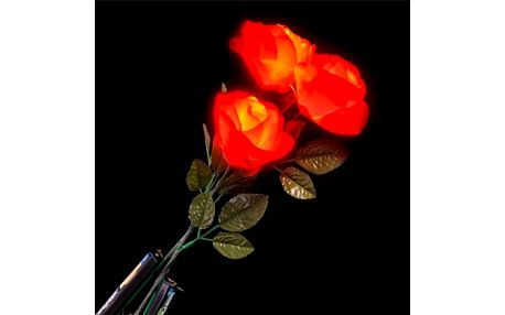 Svítící LED růže - VÝPRODEJ