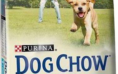 Granule Purina Dog Chow Puppy jehněčí a rýže 14 kg