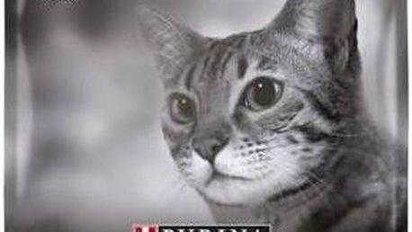Granule Purina Pro Plan Cat Adult - Chicken 3 kg