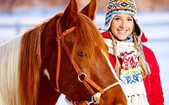 Soukromá projížďka na koni pro 1–4 osoby