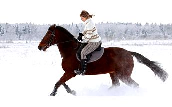 Jízda na koni pod dohledem instruktora