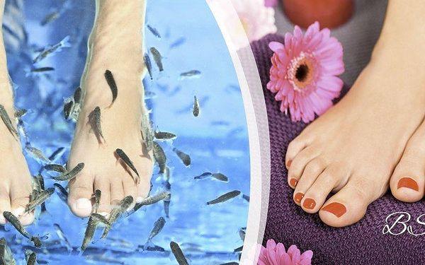Péče o nohy speciálními rybičkami Garra Rufa v pražském Salonu BS studio.