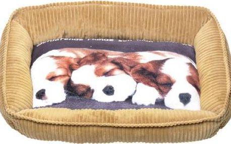 DOG Psí pelech s fotkou, 61x50x15cm, Barva Béžová