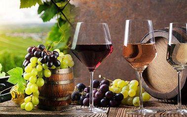 Láká Vás ochutnat zajímavá vína z celého světa? Degustační kurz vínavPraze.LJste začátečníkem v rámci ochutnávání vína anebo si rádi dáte se svou drahou polovičkou sklenku vína k obědu či k večeři? Pokud ano, tak právě tento kurz je přesně určen pro Vá