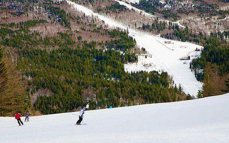 3 nebo 4 dny pro 2 s polopenzí a slevami do skiareálů v apartmánech Hecht na Šumavě