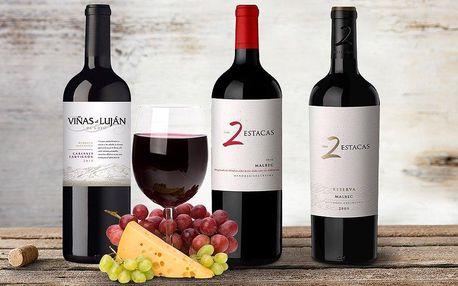 Argentinská vína z vinařství Bodega Los Toneles