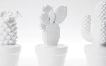 KARE DESIGN Dekorační kaktus - bílý, více druhů