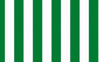 Marimekko tapeta Korsi 70 x 100 cm, zelená