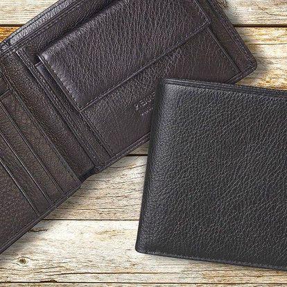Pánské kožené peněženky Pierre Cardin