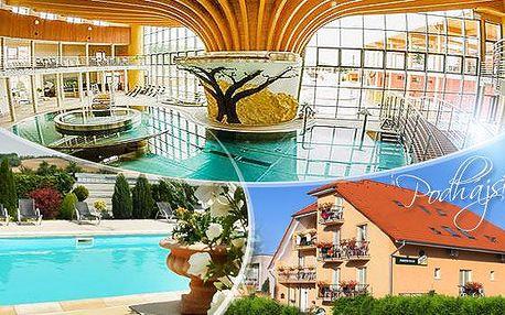 Slovensko - Podhájska na 3 až 6 dní s polopenzí pro dva, neomezeně bazén s mořskou vodou a sleva na wellness!