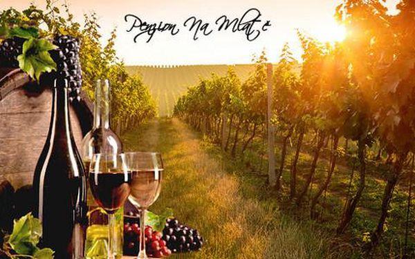 Vinařský pobyt ve sklípku na Znojemsku s polopenzí pro 2 osoby