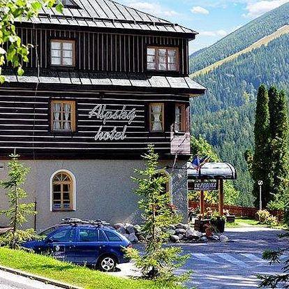 3 nebo 5denní pobyt pro 2 s polopenzí a wellness v Alpském hotelu ve Špindlerově Mlýně