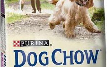 Purina Dog Chow Senior jehněčí a rýže 14 kg + Doprava zdarma