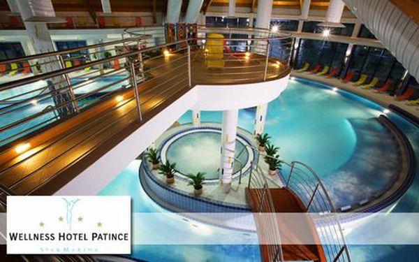 Celodenní vstup do bazénového světa Wellness Hotelu Patince****