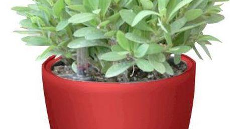 Samozavlažovací květináč G21 Ring mini červený 15cm