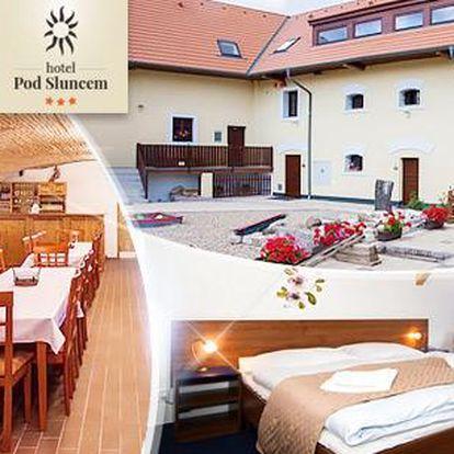 Luxusní wellness pobyt*** na 3-5 dní pro 2 osoby - Střední Čechy! Polopenze, víno, venkovní vířivka, procedury!