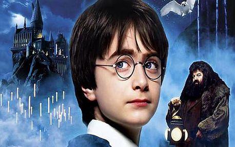 Zájezd do Londýna s prohlídkou města a filmových ateliérů, kde se točil Harry Potter