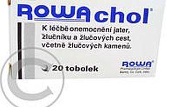 ROWACHOL CPS 20
