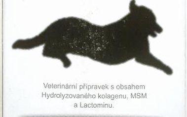 Arthronis Mini 2-60 tablet