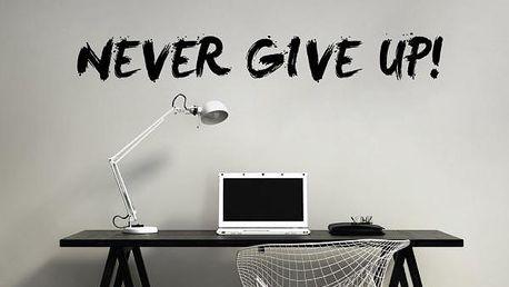 Samolepka na zeď - Never Give Up!