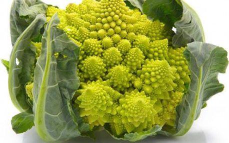 Květák romanesco - balení 5 semen - dodání do 2 dnů