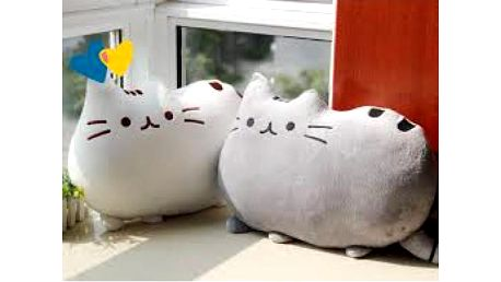 Polštářek Pusheen the cat