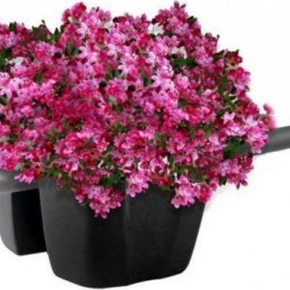 Moderní květináč na balkón Crown!