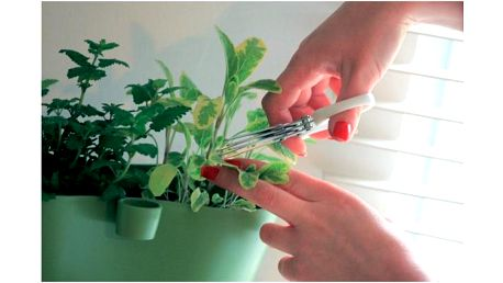 Nůžky na bylinky Herbs Cut!
