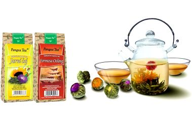 Jarní set pěti čajů pro radost, zdraví a vitalitu