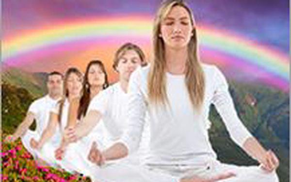 HARMONIZACI ČAKER navodí pocit vyváženosti, dobré nálady a zdraví. Vyčistěte si je a aktivujte.