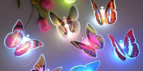 LED lampa motýl - 2 ks v balení