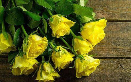Kytice ze žlutých růží nebo barevných tulipánů