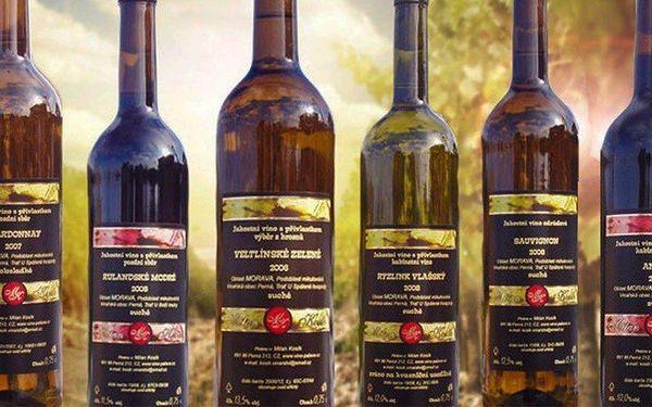 6 lahví vína z rodinného vinařství Milan Kosík