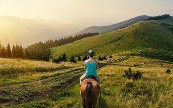 60minutová projížďka na koni pro 1 osobu u Zásmuk nedaleko Kutné Hory