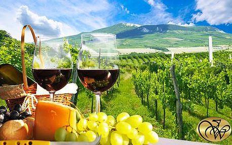 Vinařský pobyt s degustací a neomezenou konzumací vína i pálenky v Penzionu Villa Witke