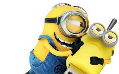 USB flash disk Mimoni - 14 stylů, 4GB - 64GB