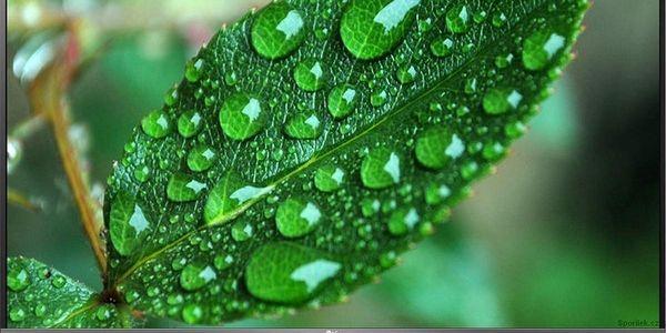 Chytrá LED televize LG 40LF630V s úhlopříčkou 100 cm