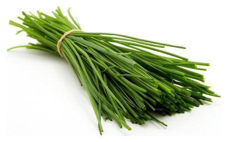 Pažitka pravá - 1,5 g semínek - dodání do 2 dnů