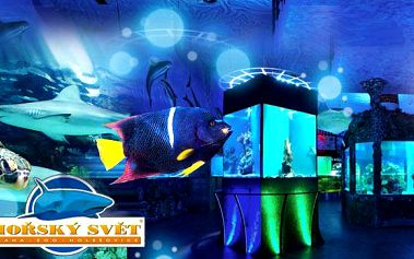 MOŘSKÝ SVĚT Holešovice - rodinné vstupné pro 2 až 5 osob! Exotičtí živočichové, atrakce i krmení žraloků!