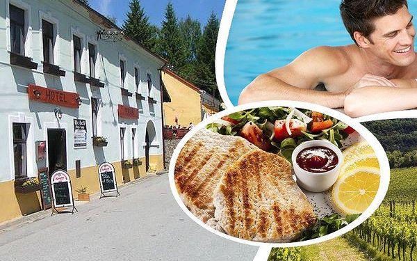 Pobyt pro dva v rodinném hotelu Hojná Voda s polopenzí, víno, káva, koláč, v létě vstup do bazénu!