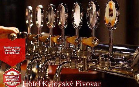 Kyjovský pivovar s polopenzí, neomezenou konzumací piva, chmelovou lázní i prohlídkou pivovaru, platnost do 30. 6. 2016