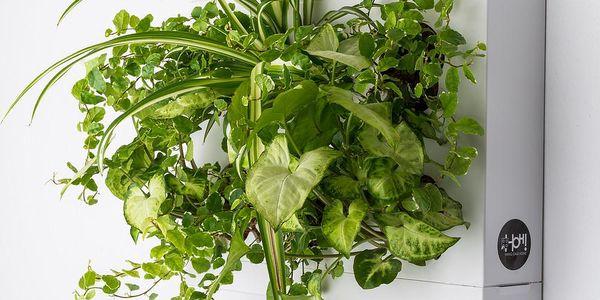 Vertikální květináč HOH! Bianco, 38x27 cm - doprava zdarma!