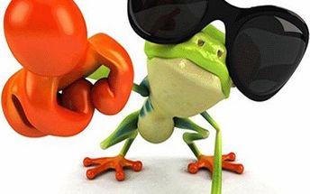 Vtipná 3D nálepka s motivem žabáka - různé motivy