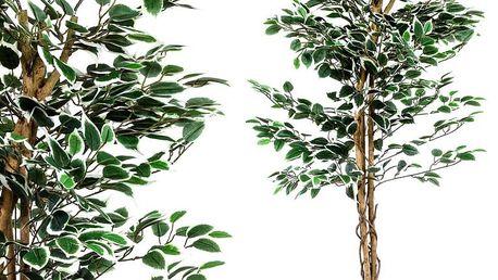 MAX 27406 Umělý strom rostlina - fíkus - 160 cm