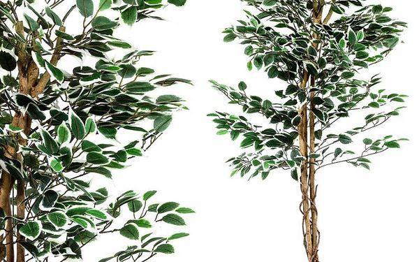 Tuin 27406 Umělý strom rostlina - fíkus - 160 cm