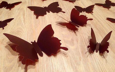 3D motýlci na zeď hnědí 12 ks 6 až 12 cm