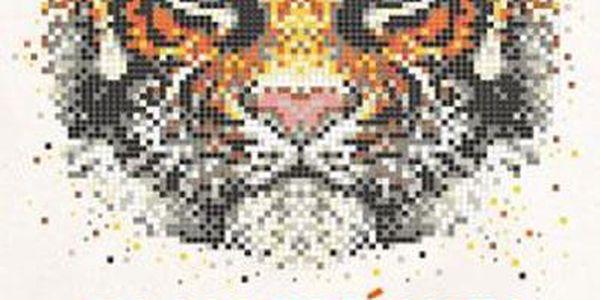 Omalovánky Pixel Art - Tajemství barev a tvarů